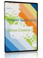 Работа с титрами в Pinnacle studio 14