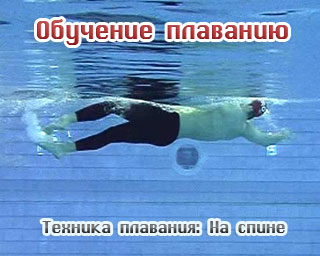 Обучение плаванию - техника плавания на спине (видео)