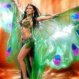 Уроки танцев живота для начинающих (видео уроки онлайн)