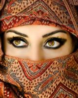 Арабские танцы живота (бесплатное видео)