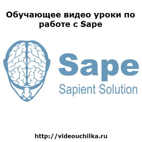 Обучающее видео по работе с Sape