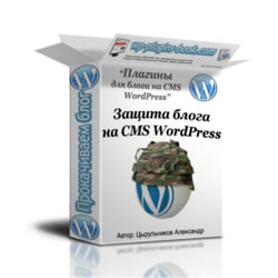 Защита блога на CMS WordPress