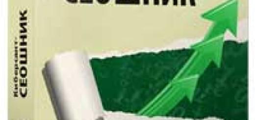 Киберсант-СЕОшник (смотреть онлайн видеокурс)
