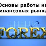 Основы работы на финансовых рынках (обучающий видео курс)