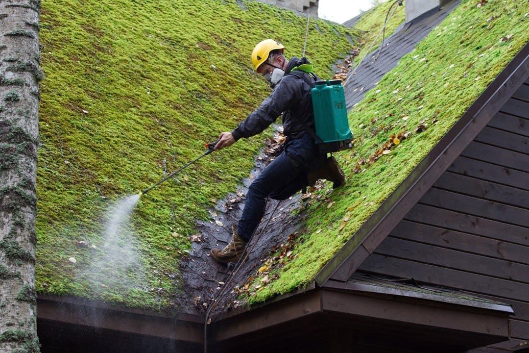 Убираем мох с крыши