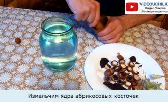 Измельчим ядра абрикосовых косточек