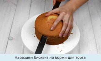 Нарезаем бисквит на коржи для торта
